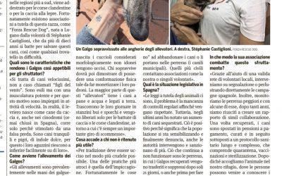 Articolo Ticinonline  23 luglio 2021